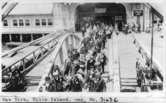 Ellis Island arrivals irish-immigrants-ellis-island