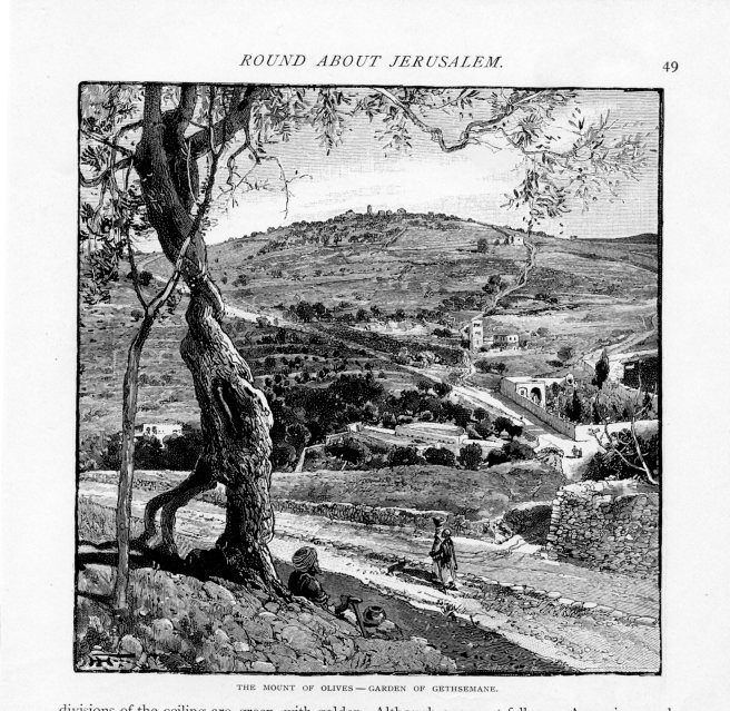Jerusalem, Mount of Olives, Garden of Gethsemane, Century, May 1889 vol 38, No 1